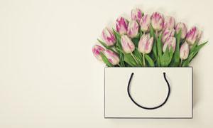 手提袋里的郁金香鲜花摄影高清图片