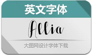 Allia系列五款英文字体