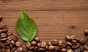 摆放在桌上的咖啡豆与绿叶高清图片