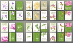 荷花与菊花点缀的卡片设计矢量素材