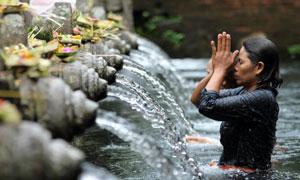 圣泉寺虔诚祈祷的信众摄影高清图片