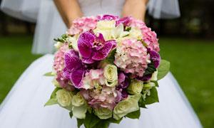 新娘手拿着的鲜艳捧花摄影高清图片