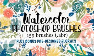 159款高清晰水彩花朵和叶子PS笔刷