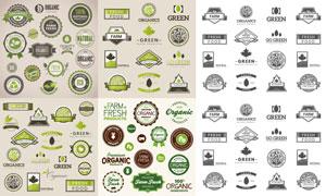 绿色有机食物主题标签设计矢量素材