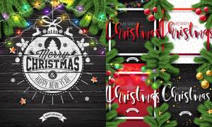 彩灯树枝元素圣诞主题设计矢量素材