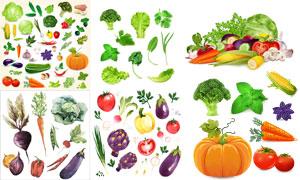玉米蘑菇与黄瓜等蔬菜设计矢量素材