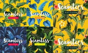 无缝拼贴效果热带植物图案矢量素材