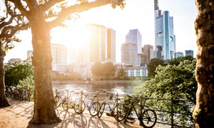 建筑物与城市绿化风光摄影高清图片