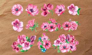 42款手绘花朵和叶子PS笔刷