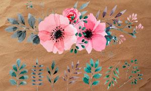 水彩花朵和枝叶藤蔓PS笔刷