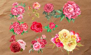 43款手绘花朵和花卉PS笔刷