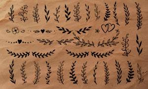 手绘藤蔓和分割线装饰PS笔刷