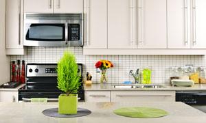 厨房橱柜与在餐桌上的绿植高清图片