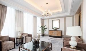 客厅沙发茶几与绿植等摄影高清图片