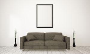 植物沙发与墙上的挂画设计高清图片