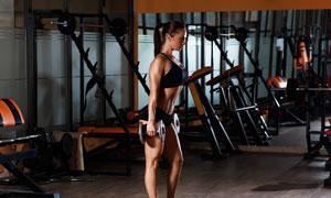 健身房里提哑铃的运动美女高清图片