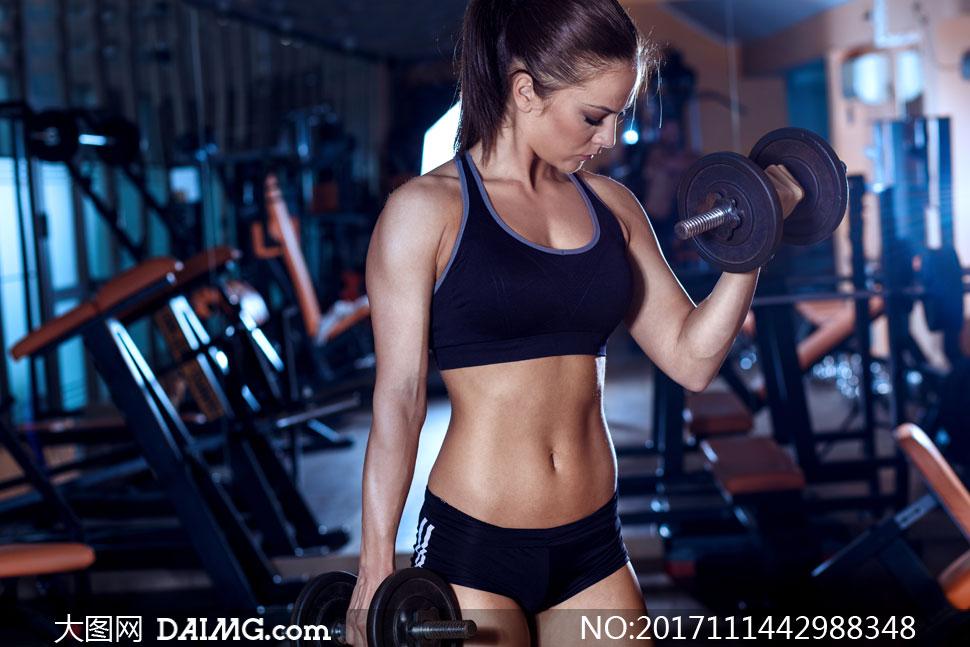 健身器材上干美女_> 素材信息                          健身器械与运动装扮的美女高清