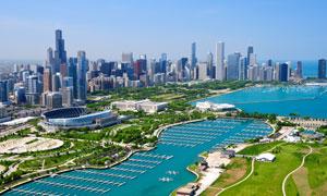 芝加哥建筑群与球场等摄影高清图片