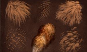 高级动物毛发纹理PS笔刷