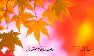 秋季枫叶和树叶PS笔刷