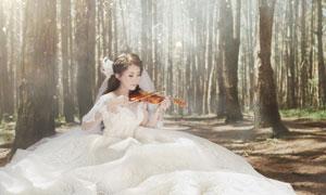 树林中拉小提琴的新娘摄影高清图片