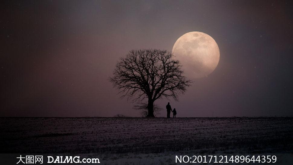 大图首页 高清图片 自然风景 > 素材信息          梦幻唯美月夜自然