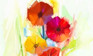 多彩花卉植物主题绘画创意高清美高梅