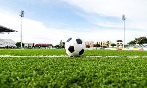 放在球场标线上的足球摄影高清图片