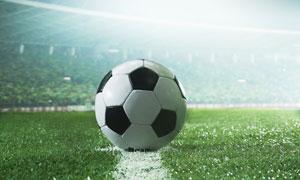 一个放在标线上的足球摄影高清图片