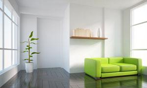 房间绿植与置物架沙发摆设高清图片