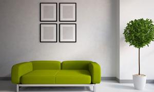房间绿植沙发与墙壁装饰画高清图片