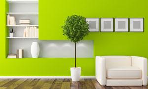 房间绿墙书架与沙发绿植等高清图片
