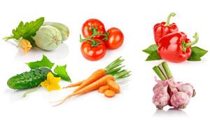 番茄辣椒与笋瓜等蔬菜摄影高清图片