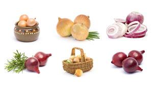 迷迭香与洋葱等蔬菜主题摄影高清图片