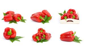 绿叶搭配的红辣椒主题摄影高清图片
