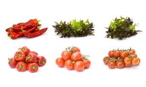 辣椒与番茄等新鲜蔬菜摄影高清图片