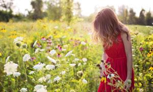 走在花丛中的红裙美女摄影高清图片