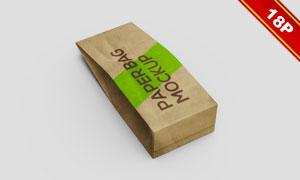 两款多角度纸袋包装效果贴图源文件