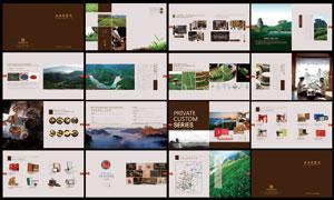 中国武夷名茶画册设计模板矢量美高梅娱乐