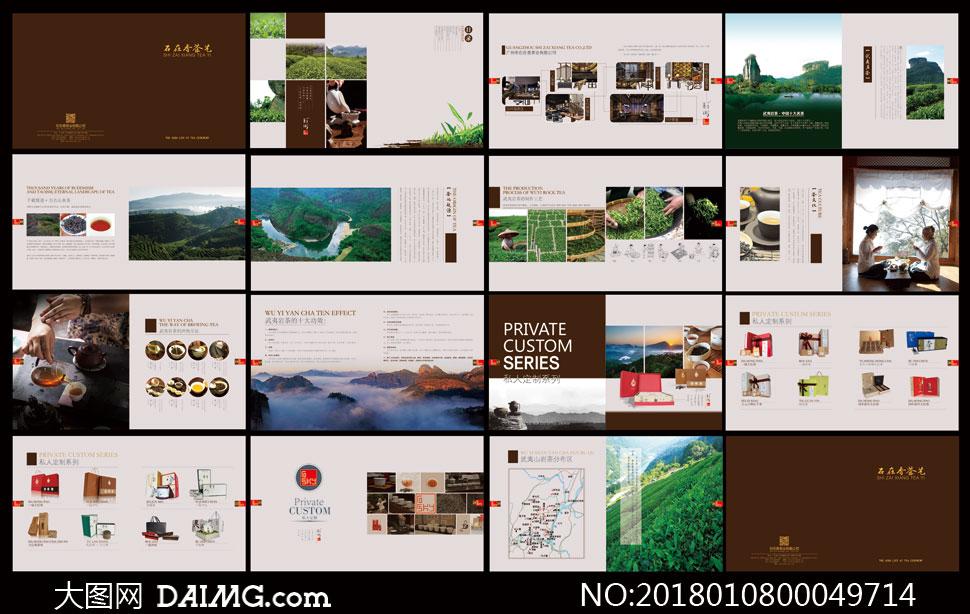 中国武夷名茶画册设计模板矢量素材