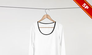 五款挂起来的女式毛衣贴图模板素材