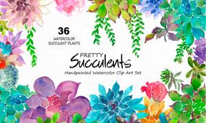 36款水彩花朵和藤蔓PS笔刷