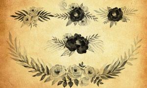 带花枝的水彩花朵PS笔刷