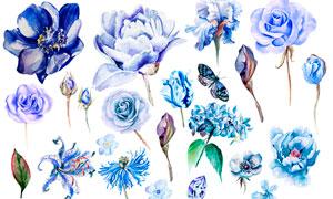 20款水彩花朵和蝴蝶PS笔刷