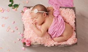 木盒里的可愛寶寶寫真攝影高清圖片