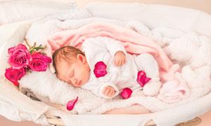 婴儿篮中睡觉的小宝宝摄影高清图片