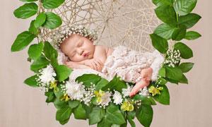 在吊篮中睡着的可爱小宝宝高清图片