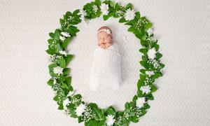 被鲜花绿叶包围的宝宝摄影高清图片