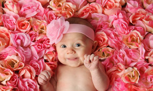 鲜花上躺着的逗趣宝宝摄影高清图片
