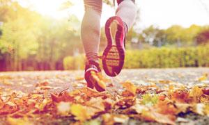 秋天跑步人物局部特写摄影高清图片